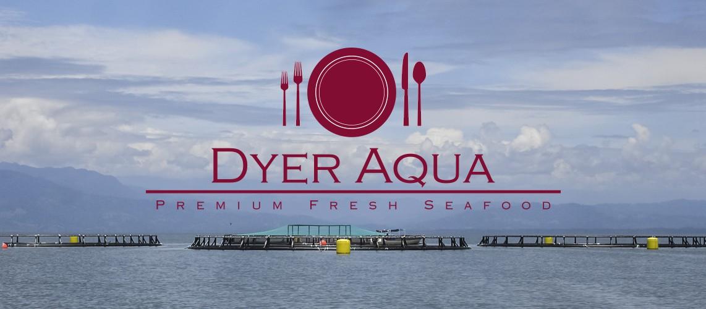 dyeraqua.com
